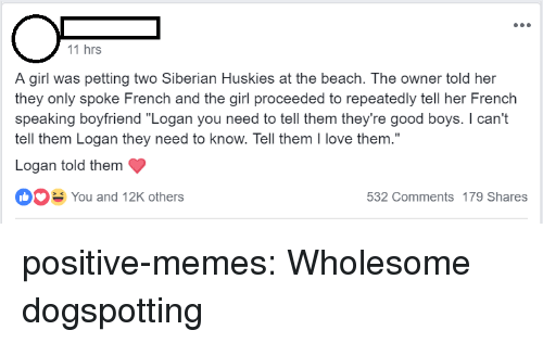 "Love, Memes, and Tumblr: 11 hrs  A girl was petting two Siberian Huskies at the beach. The owner told her  they only spoke French and the girl proceeded to repeatedly tell her French  speaking boyfriend ""Logan you need to tell them they're good boys. I can't  tell them Logan they need to know. Tell them I love them.""  Logan told them  You and 12K others  532 Comments 179 Shares positive-memes: Wholesome dogspotting"