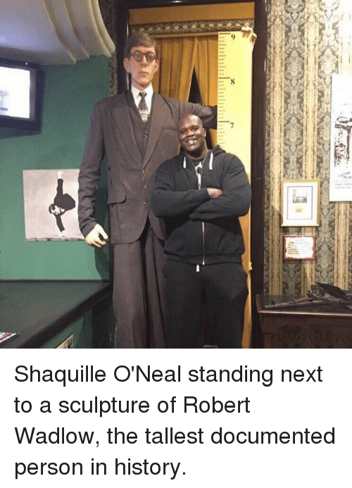 Memes, Shaquille, and Shaquille O'Neal: [111111111111111111111川川11 Shaquille O'Neal standing next to a sculpture of Robert Wadlow, the tallest documented person in history.