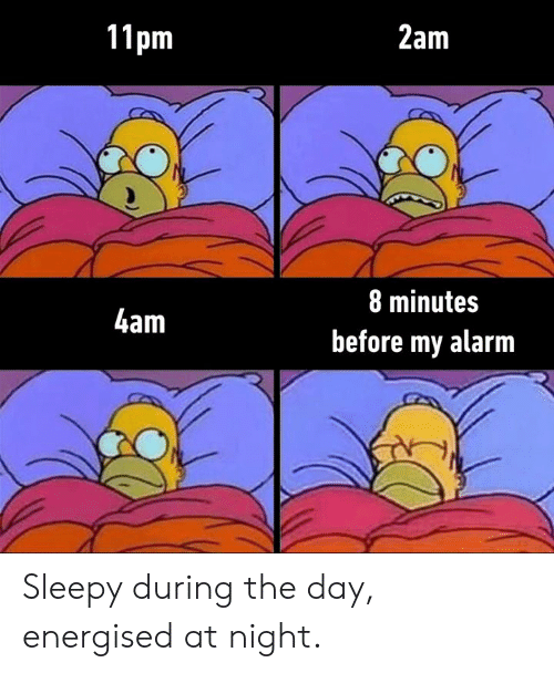 Dank, Alarm, and 🤖: 11pm  2am  8 minutes  4am  before my alarm Sleepy during the day, energised at night.