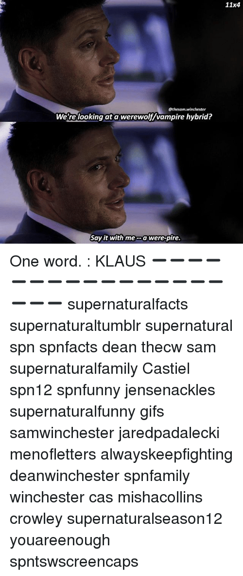 Memes, Say It, and Gifs: 11x4  @thesam.winchester  We re looking at a werewolf/vampire hybrid  Say it with me a were-pire. One word. : KLAUS ➖➖➖➖➖➖➖➖➖➖➖➖➖➖➖➖➖➖➖ supernaturalfacts supernaturaltumblr supernatural spn spnfacts dean thecw sam supernaturalfamily Castiel spn12 spnfunny jensenackles supernaturalfunny gifs samwinchester jaredpadalecki menofletters alwayskeepfighting deanwinchester spnfamily winchester cas mishacollins crowley supernaturalseason12 youareenough spntswscreencaps