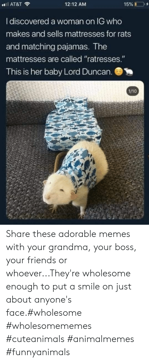 "Friends, Grandma, and Memes: 12:12 AM  AT&T  I discovered a woman on IG who  makes and sells mattresses for rats  and matching pajamas. The  mattresses are called ""ratresses.""  This is her baby Lord Duncan.  1/10 Share these adorable memes with your grandma, your boss, your friends or whoever...They're wholesome enough to put a smile on just about anyone's face.#wholesome #wholesomememes #cuteanimals #animalmemes #funnyanimals"