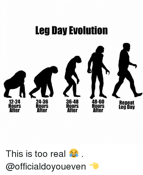 12 24 Hours After Leg Day Evolution 36 48 24 36 48 60 Hours Hours