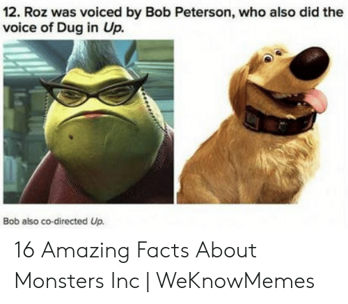 12 Roz Was Voiced by Bob Peterson Who Also Did the Voice of Dug in