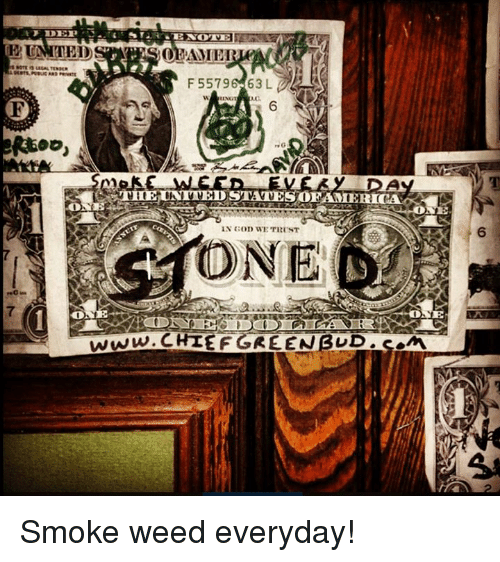 God, Memes, and Smoke Weed Everyday: 12 UNIT BID  BAME  ser10 usa-TEASER  F 55796 63 L  E.  6  goo,  rsG  THE UNITED STATES0EAMERICAN  IN GOD WE Till'sT  6  ONE  a.uk  7  www-CHIEF GREENBUD.em Smoke weed everyday!