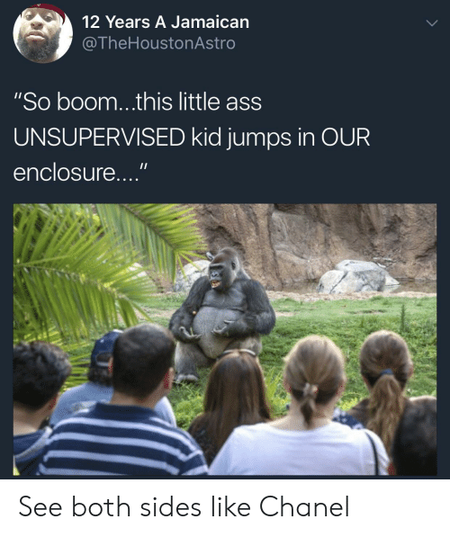"""Ass, Chanel, and Kids: 12 Years A Jamaican  @TheHoustonAstro  """"So boom...this little ass  UNSUPERVISED kid jumps in OUR  enclosure..."""" See both sides like Chanel"""