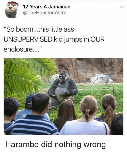 "Dank Memes, Boom, and Harambe: 12 Years A Jamaican  @TheHoustonAstroo  ""So boom...this little ass  UNSUPERVISED kid jumps in OUR  enclosure..."" Harambe did nothing wrong"