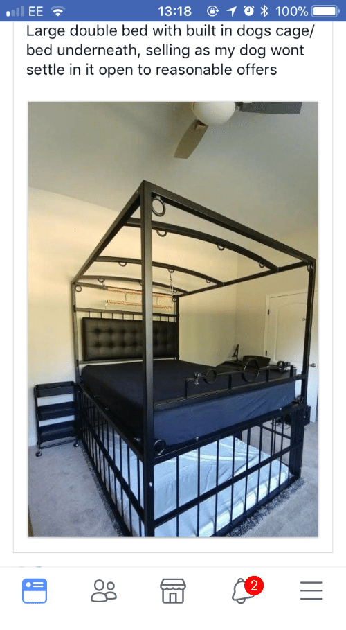 Bed With Dog Cage Underneath