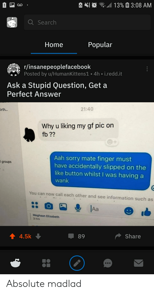 Sorry, Home, and Information: 13%3:08 AM  Q Search  Popular  Home  r/insanepeoplefacebook  Posted by u/Human Kittens1 - 4h i.redd.it  Ask a Stupid Question, Get a  Perfect Answer  21:40  irth...  Why u liking my gf pic on  fb??  Aah sorry mate finger must  have accidentally slipped on the  like button whilst I was having a  l groups  wank  You can now call each other and see information such as  Aa  Meghaan Elizabeth  3 hrs  t 4.5k  Share  89 Absolute madlad