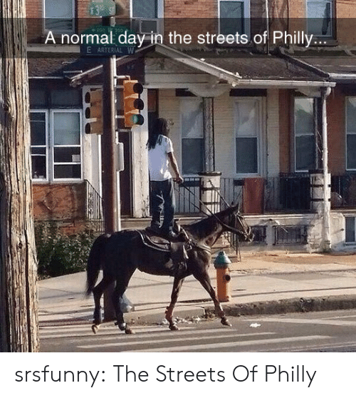 Streets, Tumblr, and Blog: 13  A normal day in the streets.of Philly...  E ARTERIAL W srsfunny:  The Streets Of Philly