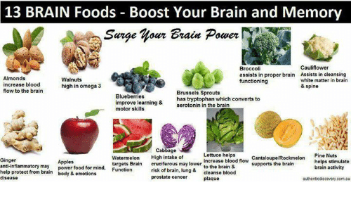 13 BRAIN Foods Boost Your Brain and Memory Sarge Our Grain