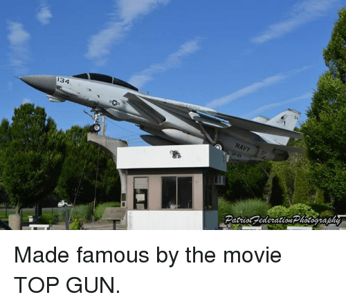 134 NAVY Made Famous by the Movie TOP GUN | Meme on ME ME