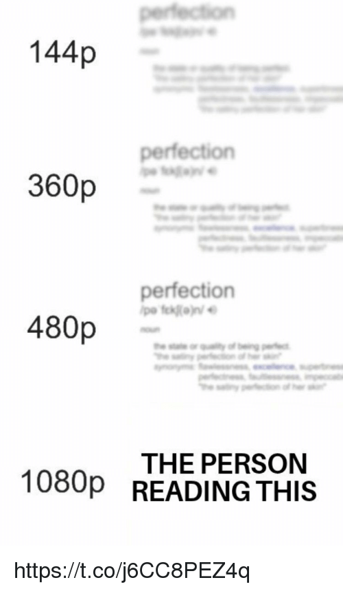Memes, 🤖, and 1080p: 144p  perfection  360p  perfection  480p  THE PERSON  READING THIS  1080p https://t.co/j6CC8PEZ4q