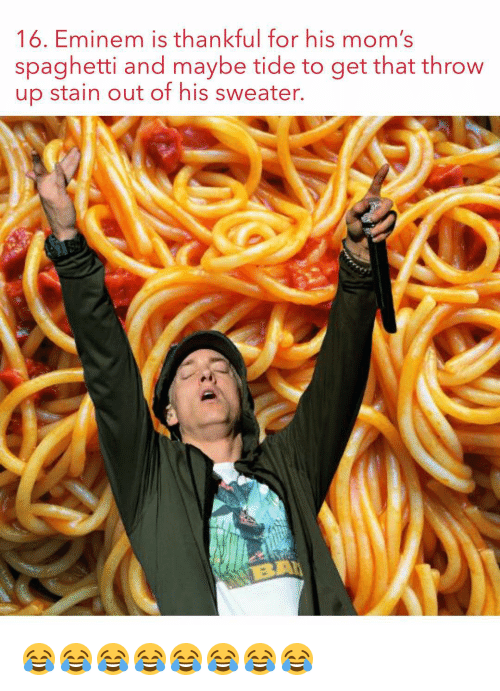 Eminem, Memes, and Spaghetti: 16. Eminem is thankful for his mom  spaghetti and maybe tide to get that throw  up stain out of his sweater. 😂😂😂😂😂😂😂😂