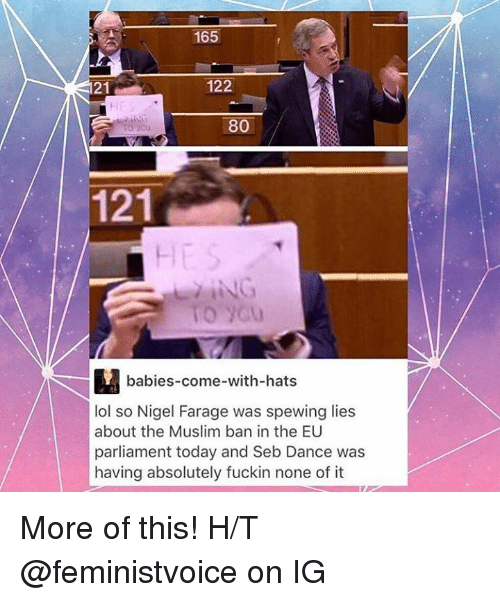 Memes, Nigel Farage, and 🤖: 165  122  21  80  121  babies-come-with-hats  lol so Nigel Farage was spewing lies  about the Muslim ban in the EU  parliament today and Seb Dance was  having absolutely fuckin none of it More of this!  H/T @feministvoice on IG