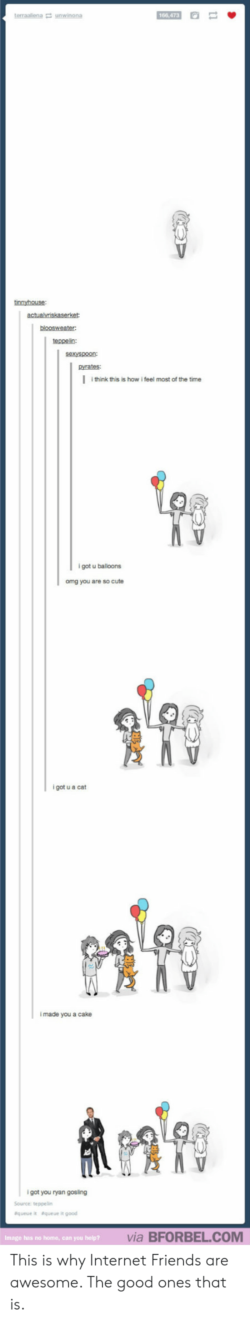 Cute, Friends, and Internet: 166,473  tinnyhouse  teppelin:  sexyspoon:  pyrates:  l  i think this is how i feel most of the time  got u balloons  omg you are so cute  i got u a cat  i made you a cake  康?  i got you ryan gosling  Source: teppelin  queue it aqueue it good  via BFORBEL.COM  Image  has no home, can you help? This is why Internet Friends are awesome. The good ones that is.