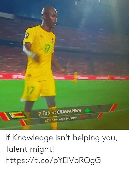 Memes, Knowledge, and 🤖: 17  7 Talent CHAWAPIWA  17 Knowledge MUSONA If Knowledge isn't helping you, Talent might! https://t.co/pYEIVbROgG