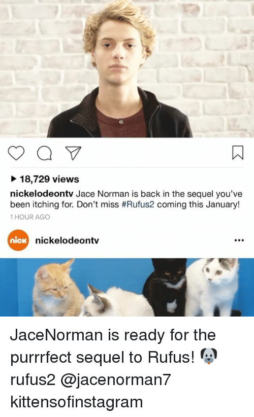 Memes, Nick, and 🤖: 18,729 views  nickelodeontv Jace Norman is back in the sequel you've  been itching for. Don't miss #Rufus2 coming this January!  1 HOUR AGO  nickelodeontv  nicK JaceNorman is ready for the purrrfect sequel to Rufus! 🐶 rufus2 @jacenorman7 kittensofinstagram