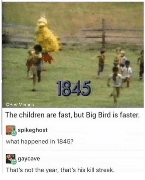 Children, Memes, and Big Bird: 1845  @BestMemes  The children are fast, but Big Bird is faster.  spikeghost  what happened in 1845?  gaycave  That's not the year, that's his kill streak.