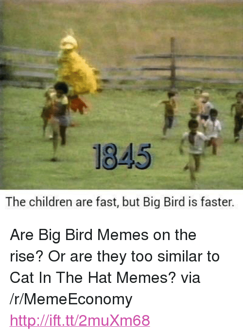 """Children, Memes, and Http: 1845  The children are fast, but Big Bird is faster. <p>Are Big Bird Memes on the rise? Or are they too similar to Cat In The Hat Memes? via /r/MemeEconomy <a href=""""http://ift.tt/2muXm68"""">http://ift.tt/2muXm68</a></p>"""