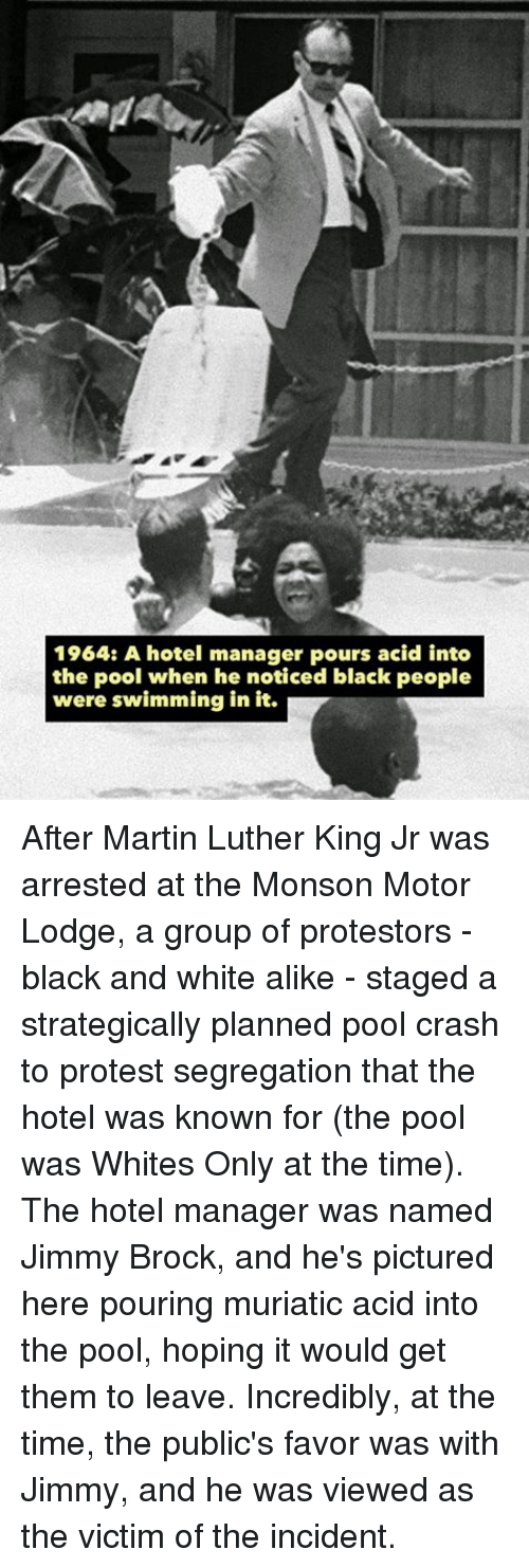 25 best memes about strategic planning strategic - Martin luther king jr swimming pool ...