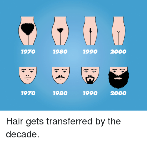 1970 1970 1980 1980 1990 2000 1990 2000 hair gets transferred by the