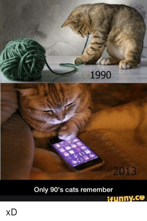 1990 013 only 90 s cats remember ifunnyco xd meme on