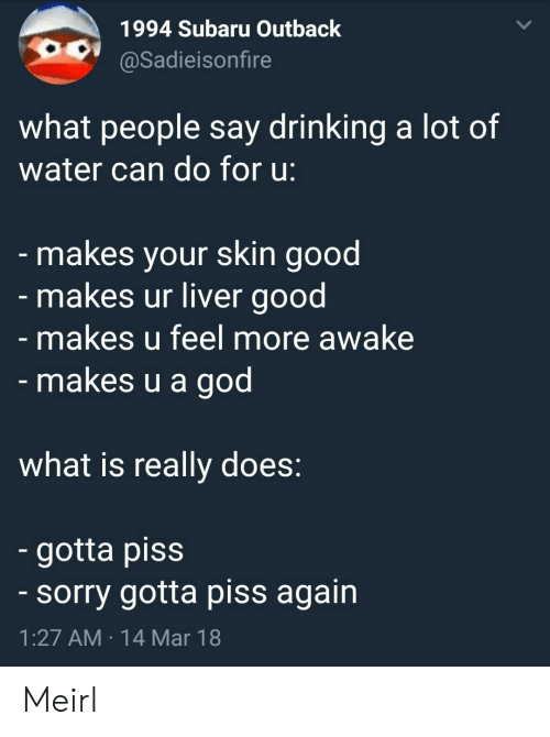 Drinking, God, and Sorry: 1994 Subaru Outback  @Sadieisonfire  what people say drinking a lot of  water can do for u:  makes your skin good  makes ur liver good  makes u feel more awake  makes u a god  what is really does  gotta piss  sorry gotta piss again  1:27 AM 14 Mar 18 Meirl