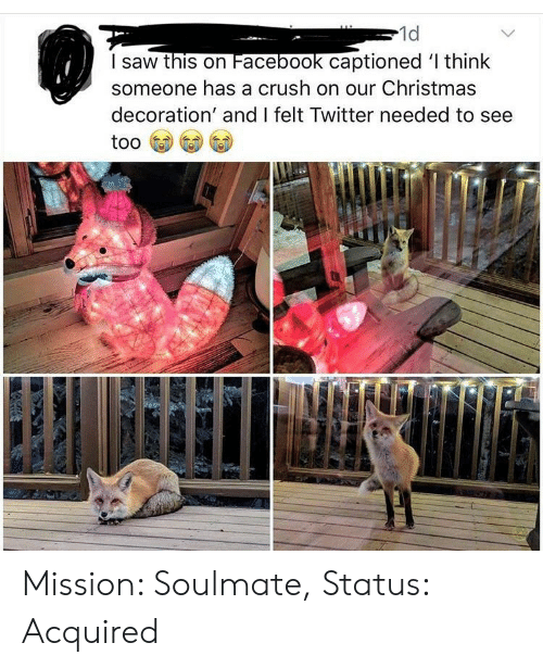 Christmas, Crush, and Facebook: 1d  I saw this on Facebook captioned l think  someone has a crush on our Christmas  decoration' and I felt Twitter needed to see Mission: Soulmate, Status: Acquired