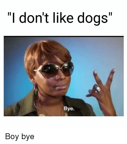 1l i dont like dogs bye boy bye 27634201 ✅ 25 best memes about boy bye boy bye memes