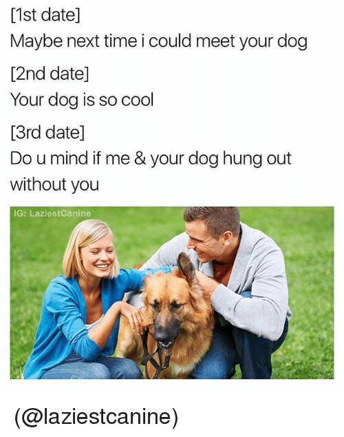 Cool, Date, and Time: [1st date]  Maybe next time i could meet your dog  [2nd date]  Your dog is so cool  [3rd date]  Do u mind if me & your dog hung out  without you  IG: LaziestCanine (@laziestcanine)