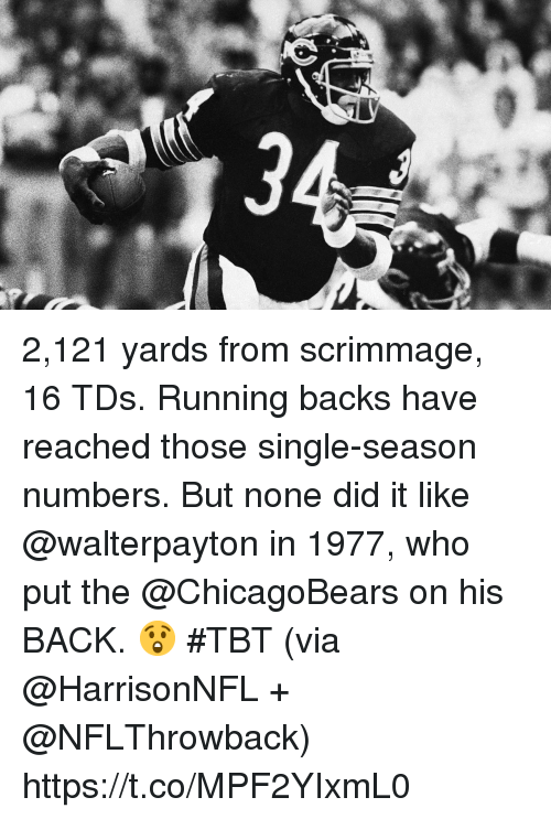 Memes, Tbt, and Running: 2,121 yards from scrimmage, 16 TDs. Running backs have reached those single-season numbers.  But none did it like @walterpayton in 1977, who put the @ChicagoBears on his BACK. 😲 #TBT (via @HarrisonNFL + @NFLThrowback) https://t.co/MPF2YIxmL0