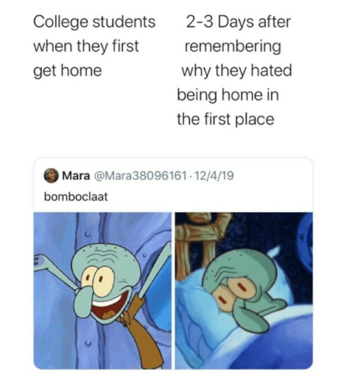 College, Home, and Why: 2-3 Days after  remembering  College students  when they first  why they hated  get home  being home in  the first place  Mara @Mara38096161· 12/4/19  bomboclaat