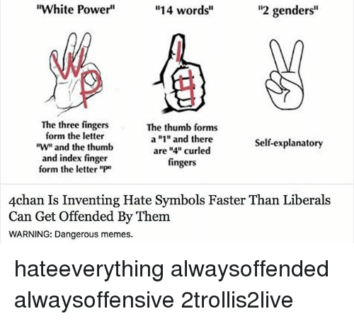 """4chan, Memes, and Power: """"2 genders""""  """"White Power""""  14 words  The three fingers  The thumb forms  form the letter  a """"1"""" and there  Self-explanatory  """"W an  the thumb  are """"4"""" curled  and index finger  fingers  form the letter  """"P  4chan Is Inventing Hate Symbols Faster Than Liberals  Can Get Offended By Them  WARNING: Dangerous memes. hateeverything alwaysoffended alwaysoffensive 2trollis2live"""