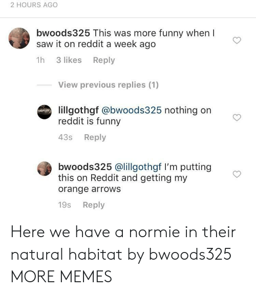 Dank, Funny, and Memes: 2 HOURS AGO  bwoods325 This was more funny when l  saw it on reddit a week ago  1h 3 likes Reply  View previous replies (1)  lillgothgf @bwoods325 nothing on  reddit is funny  43s Reply  bwoods325 @lillgothgf I'm putting  this on Reddit and getting my  orange arrows  19s Reply Here we have a normie in their natural habitat by bwoods325 MORE MEMES