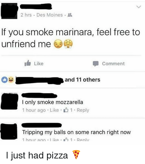 Memes, Pizza, and Free: 2 hrs . Des Moines .  If you smoke marinara, feel free to  unfriend me ( )  I Like  Comment  and 11 others  -  I only smoke mozzarella  1 hour ago . Like .山1 . Reply  Tripping my balls on some ranch right now  1 hour a ke 1 Renlu I just had pizza 🍕