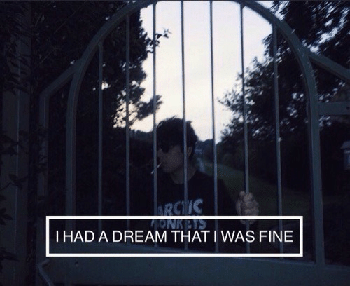 A Dream, Dream, and Fine: 2  I HAD A DREAM THAT IWAS FINE