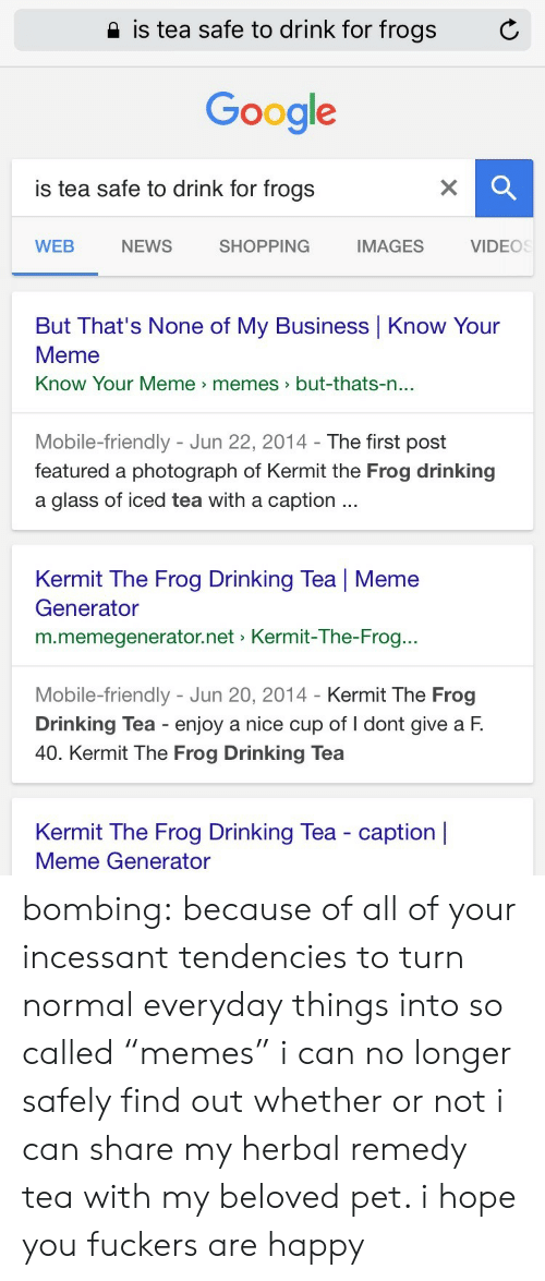 "Drinking, Google, and Kermit the Frog: 2 is tea safe to drink for frogs  C  Google  is tea safe to drink for frogs  WEB  NEWS  SHOPPING  IMAGES  VIDEOS  But That's None of My Business Know Your  Meme  Know Your Meme memes>but-thats-n  ...  Mobile-friendly - Jun 22, 2014- The first post  featured a photograph of Kermit the Frog drinking  a glass of iced tea with a caption  Kermit The Frog Drinking Tea | Meme  Generator  m.memegenerator.net Kermit-The-Frog..  Mobile-friendly - Jun 20, 2014 - Kermit The Frog  Drinking Tea enjoy a nice cup of I dont give a F.  40. Kermit The Frog Drinking Tea  Kermit The Frog Drinking Tea - caption |  Meme Generator bombing:  because of all of your incessant tendencies to turn normal everyday things into so called ""memes"" i can no longer safely find out whether or not i can share my herbal remedy tea with my beloved pet. i hope you fuckers are happy"