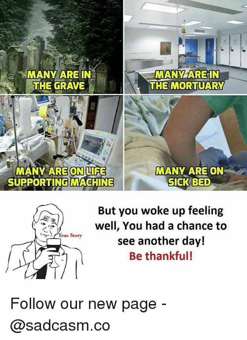 Memes, True, and True Story: 2  MANY ARE IN  MANY AREIN  THE MORTUARY  GRAVE  MANY ARE ONLIFE  SUPPORTING MACHINE  MANY ARE ON  SICK BED  But you woke up feeling  well, You had a chance to  see another day!  Be thankful!  True Story Follow our new page - @sadcasm.co
