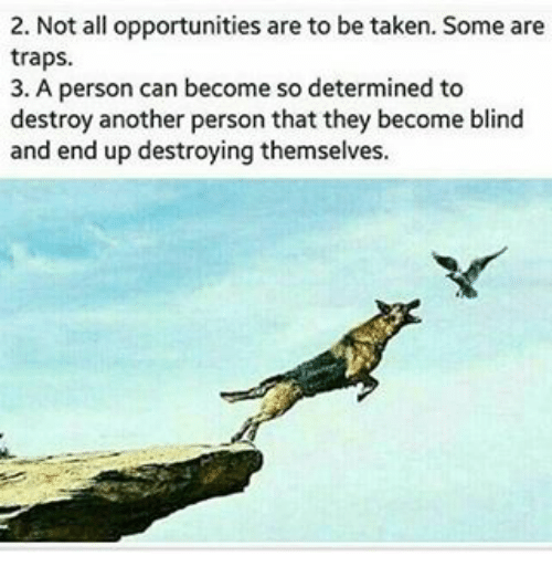Memes, Taken, and Trap: 2. Not all opportunities are to be taken. Some are  traps.  3. A person can become so determined to  destroy another person that they become blind  and end up destroying themselves.