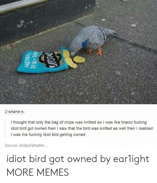 Dank, Fucking, and Memes: 2-shane-s  I thought that only the bag of chips was knitted so I was like lmaoo fucking  idiot bird got owned then l saw that the bird was knitted as well then I realized  I was the fucking idiot bird getting owned  Source: birdsofafeathe... idiot bird got owned by ear1ight MORE MEMES