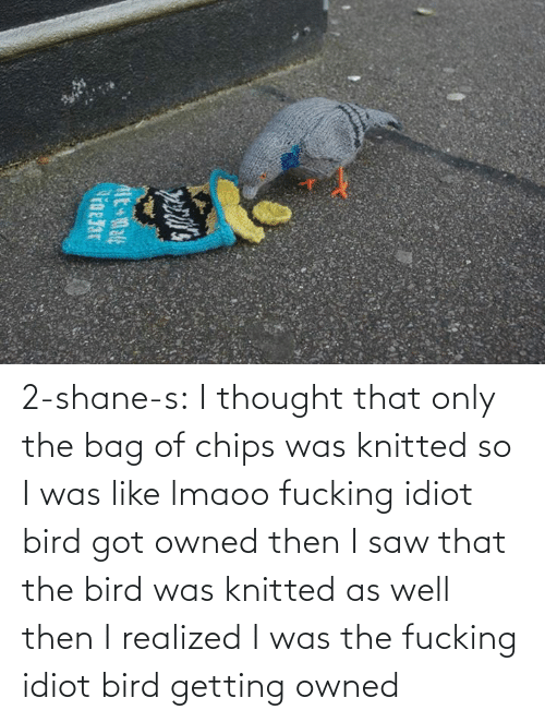 Saw, Target, and Tumblr: 2-shane-s: I thought that only the bag of chips was knitted so I was like lmaoo fucking idiot bird got owned then I saw that the bird was knitted as well then I realized I was the fucking idiot bird getting owned