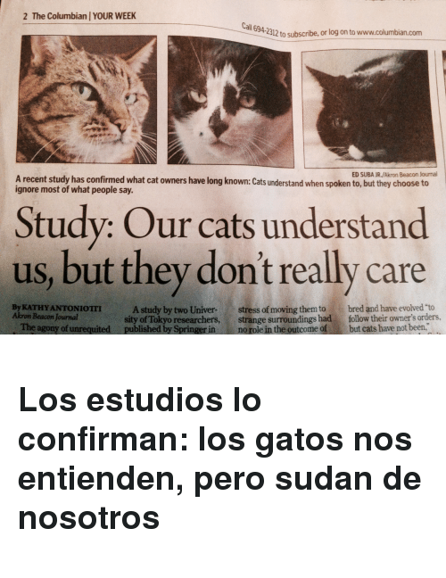 """Cats, Been, and Cat: 2 The Columbian YOUR WEEK  all  694-2312 to subscribe, or log on to www.columbian.com  ED SUBA JR./Akron Beacon Journal  A recent study has confirmed what cat owners have long known: Cats understand when spoken to, but they choose to  ignore most of what people say.  Study: Our cats understand  us, but they don't really care  By KATHY ANTONIOTII  Akron Beacon Journal  A study by two Univer-stress of moving them to bred and have evolved """"to  sity of Tokyo researchers, strange surroundings had follow their owner's orders,  The agony of unrequited published by Springer in no role in the outcome of but cats have not been, <h3>Los estudios lo confirman: los gatos nos entienden, pero sudan de nosotros</h3>"""