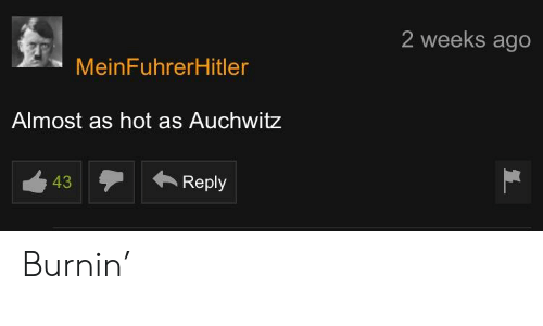 Hot,  Almost, and  Ago: 2 weeks ago  MeinFuhrerHitler  Almost as hot as Auchwitz  12Reply  43 Burnin'