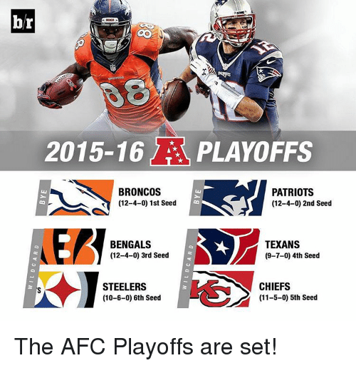 Patriotic, Sports, and Bengals: 2015-16  PLAYOFFS  BRONCOS  PATRIOTS  (12-4-0) 1st Seed  (12-4-0) 2nd Seed  BENGALS  TEXANS  (12-4-0) 3rd Seed  (9-7-0) 4th Seed  CHIEFS  STEELERS  (11-5-0) 5th Seed  (10-6-0) 6th Seed The AFC Playoffs are set!