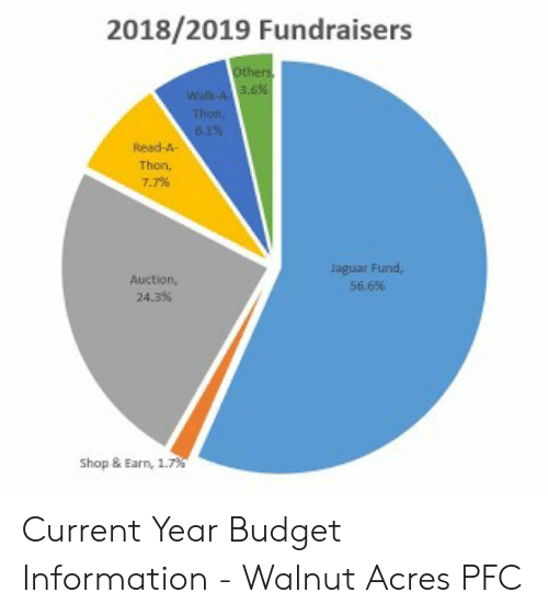 20182019 Fundraisers Tho Read-A 77% Aguar Fund 566% Auction