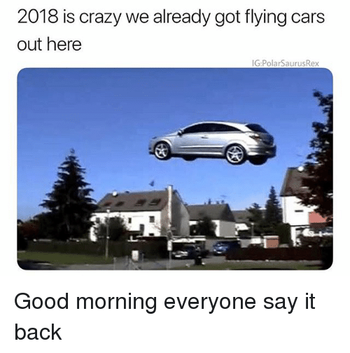 Cars, Crazy, and Memes: 2018 is crazy we already got flying cars  out here  IG:PolarSaurusRex Good morning everyone say it back