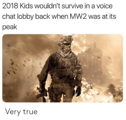 True, Chat, and Kids: 2018 Kids wouldn't survive in a voice  chat lobby back when MW2 was at its  peak Very true