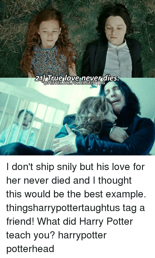 Harry Potter, Love, and Memes: 21) True love never dies. I don't ship snily but his love for her never died and I thought this would be the best example. thingsharrypottertaughtus tag a friend! What did Harry Potter teach you? harrypotter potterhead