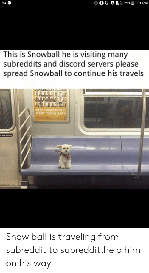 New York, Help, and Snow: 22% 8:01 PM  This is Snowball he is visiting many  subreddits and discord servers please  spread Snowball to continue his travels  NEW YORKERS KEEP  NEW YORK SAFE  tlan on door Snow ball is traveling from subreddit to subreddit.help him on his way