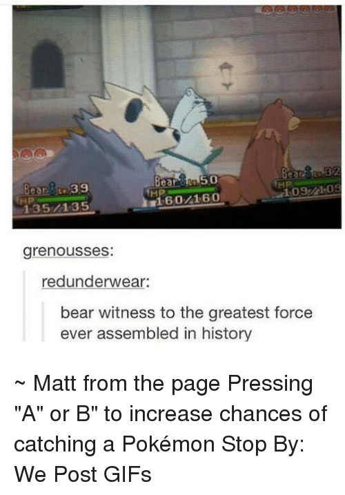 "Dank, Pokemon, and Bear: 2339  135/1-35  HP  HP  grenousses:  redunderwear:  bear witness to the greatest force  ever assembled in history ~ Matt from the page Pressing ""A"" or B"" to increase chances of catching a Pokémon Stop By: We Post GIFs"